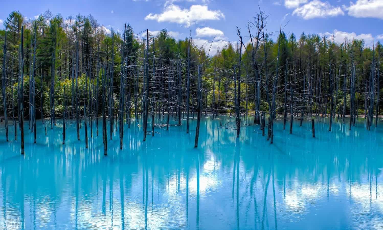 Картинки по запросу голубой пруд хоккайдо япония