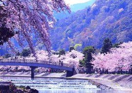 japan-nature-landscape-visana