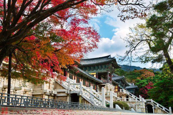 Du lịch cao niên tới những nơi chùa chiền thanh tịnh