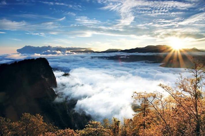 du-lịch-đài-loan-tự-túc-Alishan-Mountain-Picturess-711