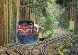 du-lịch-đài-loan-tự-túc-Alishan-Railway-Pictures-850-thumb
