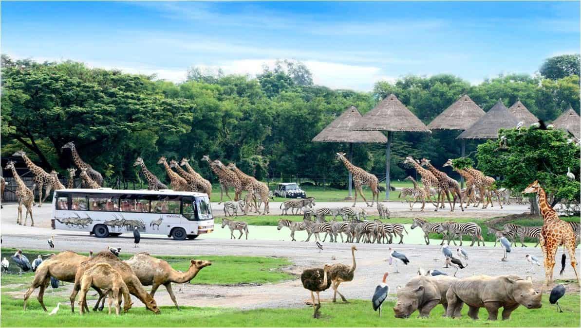 kinh-nghiem-du-lich-bangkok-safari (1)