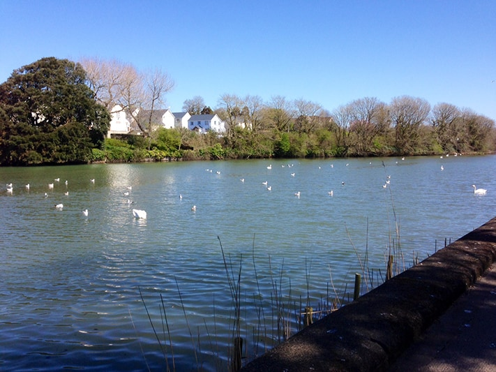 du-lịch-anh-quốc-Pembroke-river-Mill-Pond