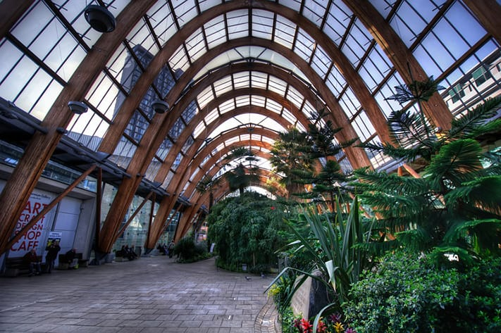 du-lịch-anh-quốc-Sheffield-Winter-Gardens-Millennium-Gallery-Vitral-Rooflights-Internal-Towards-St-Pauls-Tower-and-the-Peace-Gardens-711