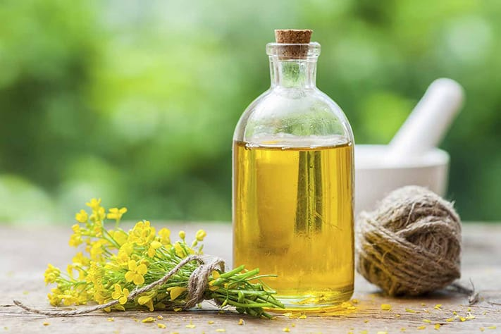 du-lịch-canada-Canola-oil-different-vegetable-711