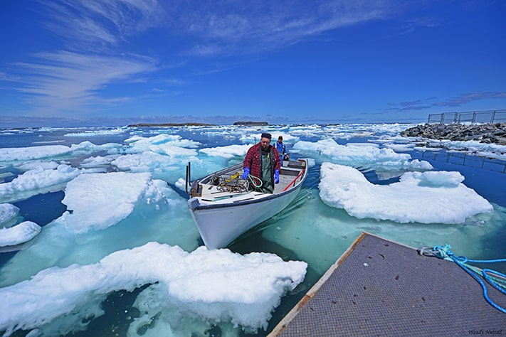 du-lịch-canada-Fishing-Boat-Ice-dave-BartlettLAnse-aux-Meadows-711