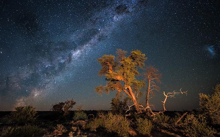 du-lịch-nam-phi-Kalahari-Night