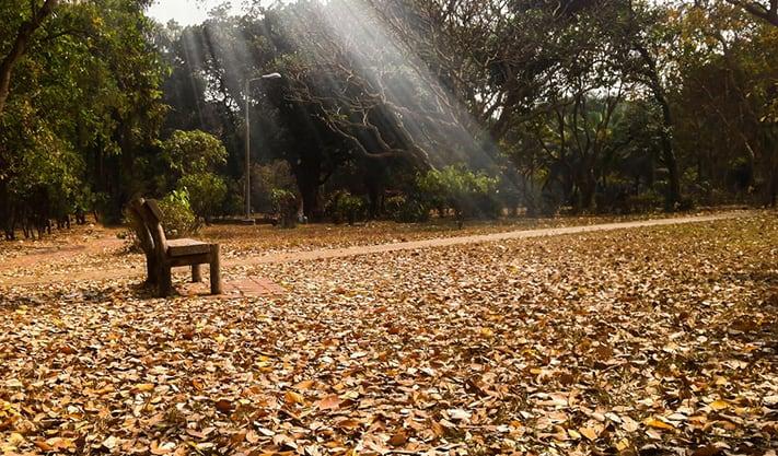 du-lịch-bangladesh-Ramna-park-711