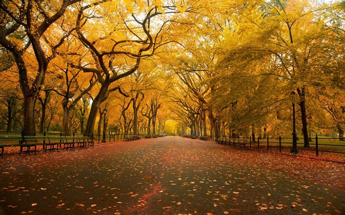 du-lịch-thổ-nhĩ-kỳ-istanbul-autumn-itinerary-711