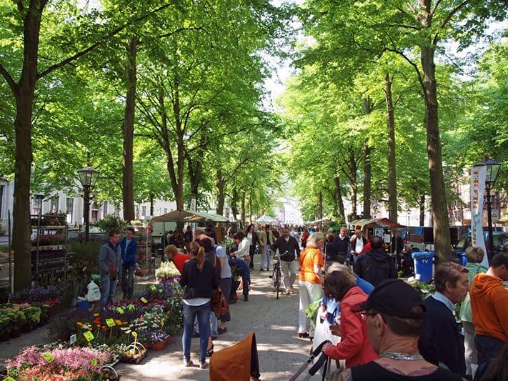 kinh-nghiệm-du-lịch-hà-lan-Hague-711