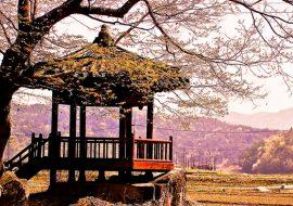 dich-vu-visa-han-quoc-rural-korea-850x400